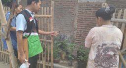 Pemanfaatan Lahan Pekarangan (PLP), Solusi Memulihkan Ekonomi Penyintas Tsunami